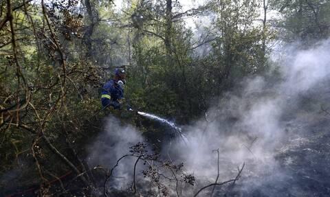 Φωτιές σε Κάζα και Βίλια Αττικής: Συνεχίζονται οι επιχειρήσεις κατάσβεσης