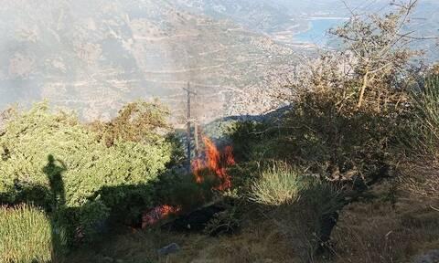Λασίθι: Σε εξέλιξη μεγάλη φωτιά - «Σηκώθηκε» ελικόπτερο