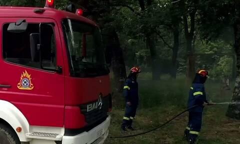 Προσλήψεις στην Πυροσβεστική: Νέα προθεσμία αιτήσεων