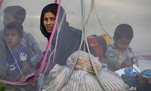 РФ пока не решила, сколько мигрантов из Афганистана она готова принять
