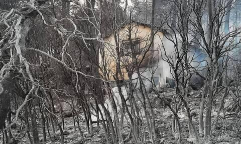 Βόρεια Εύβοια: Η ΚΥΑ για την κάλυψη ασφαλιστικών εισφορών στις πυρόπληκτες περιοχές