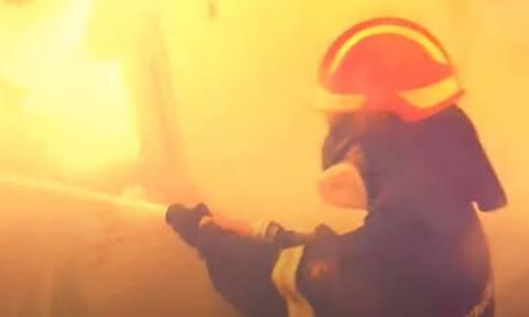 Φωτιά στα Βίλια: Το συγκλονιστικό βίντεο της Πυροσβεστικής για τη μάχη στο πύρινο μέτωπο