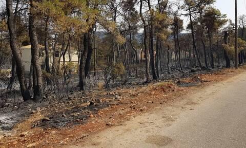 Συγκλονίζει ο πιλότος του Beriev - Το σπίτι του καιγόταν και εκείνος επιχειρούσε στις φωτιές