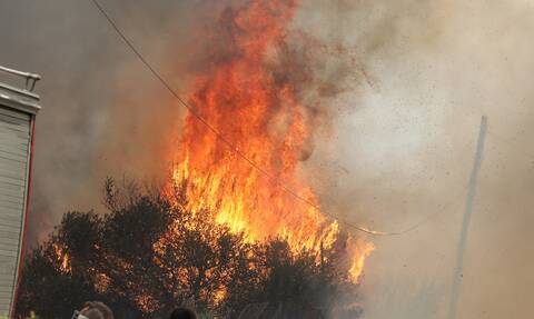 Φωτιά τώρα: Πυρκαγιά στο Κρόκι της Άμφισσας