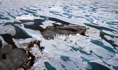 Επιστήμονες ανακάλυψαν κατά λάθος το βορειότερο νησί του κόσμου (video)