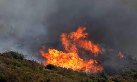 Φωτιά στις Σέρρες: Συνεχίζεται η μάχη με τις φλόγες στην Αλιστράτη