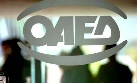 ΟΑΕΔ: Μέχρι 5/9 η υποβολή αιτήσεων για τις 180.0000 επιταγές αγοράς βιβλίων