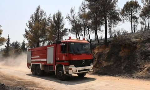 Φωτιά στην Κρήτη - Επί ποδός η Πυροσβεστική