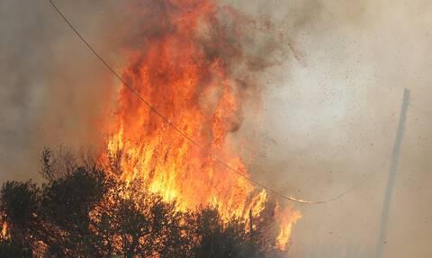 Φωτιές: Οριοθετημένες οι πυρκαγιές σε Βλασαίικα Κορινθίας και Αστροβίτσα Αιτωλικού