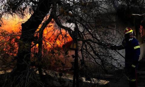 Σέρρες: Φωτιά σε ξενοδοχείο - Τυλίχθηκε στις φλόγες (vid)