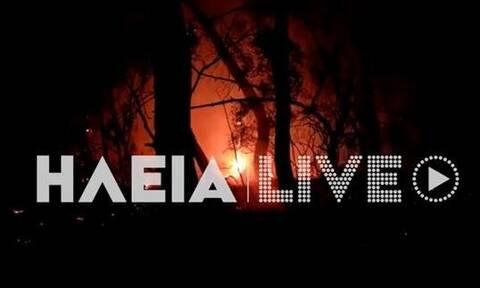 Φωτιά ΤΩΡΑ στην Ηλεία: Επιχειρούν ισχυρές δυνάμεις (vid)