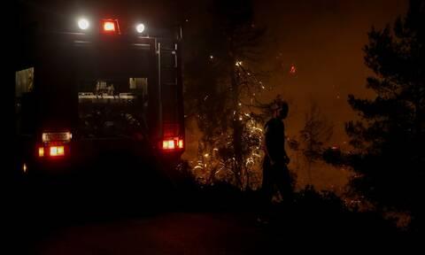 Φωτιά στο Δίστομο: Μάχη με τις φλόγες - Σε ύφεση το πύρινο μέτωπο