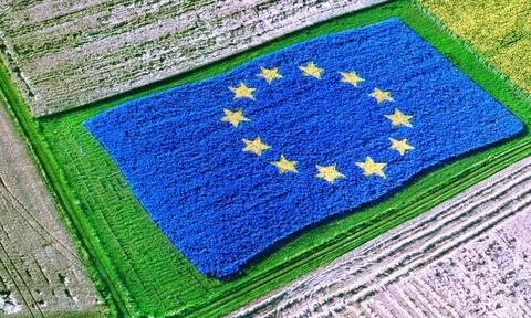 Η ΕΕ ενισχύει την ηγετική της θέση στο παγκόσμιο εμπόριο αγροδιατροφικών προϊόντων