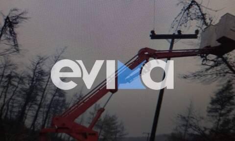 Κακοκαιρία στην Εύβοια: Χωρίς ρεύμα ο οικισμός Μακρυμάλλη από πτώσεις δέντρων