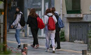 Παυλάκης: Να μην ανοίξουν τα σχολεία τη Δευτέρα, αλλιώς μαθήματα στο προαύλιο