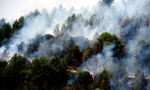 Ισπανία: Εκκενώνονται δύο ακόμη πόλεις στην Ανδαλουσία - Οι πυρκαγιές μαίνονται για πέμπτη ημέρα