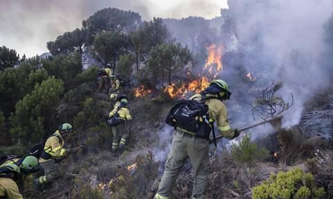 Ισπανία: Υπό έλεγχο με την βοήθεια της βροχής η μεγάλη δασική πυρκαγιά στην Ανδαλουσία
