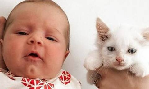 Γυναίκα γέννησε την ίδια μέρα με τη γάτα της - Οι φώτο είναι απίθανες