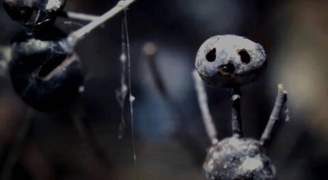 O Καστανάνθρωπος: Ένας serial killer σκορπά τον τρόμο στη νέα σειρά του Netflix