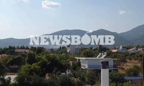 Φωτιά στην Πάρνηθα: Προσήχθη νεαρός, κάτοικος της περιοχής, μετά από καταγγελία