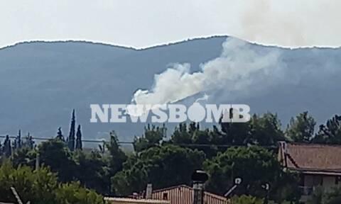 Φωτιά ΤΩΡΑ: Νέα πυρκαγιά στην Πάρνηθα - Συναγερμός στην Πυροσβεστική