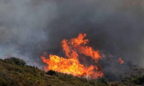 Φωτιά στην Καστοριά - Στη μάχη και εναέρια μέσα