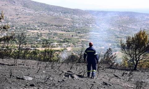 Πως θα επιχορηγηθούν οι αγροτικές εκμεταλεύσεις των πυρόπληκτων
