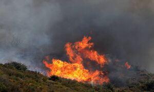 Ηράκλειο: Φωτιά κοντά στο δάσος της Κέρης