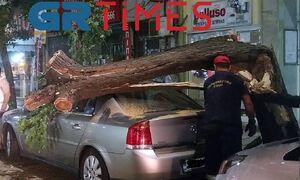 Θεσσαλονίκη: Δέντρο καταπλάκωσε αυτοκίνητο - Αναστάτωση στο κέντρο της πόλης (vid)