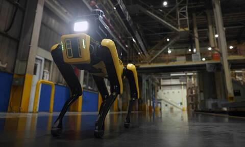 To ρομπότ-σκύλος της Hyundai ανέλαβε υπηρεσία