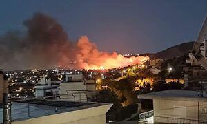 Φωτιά ΤΩΡΑ στη Νέα Μάκρη - Εκκενώσεις σπιτιών και ενίσχυση πυροσβεστικών δυνάμεων