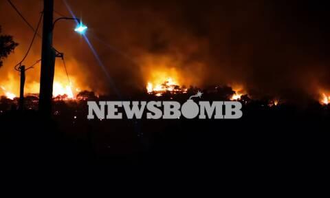 Ρεπορτάζ Newsbomb.gr - Φωτιά Νέα Μάκρη: Εικόνες από το μεγάλο πύρινο μέτωπο στον Άγιο Εφραίμ
