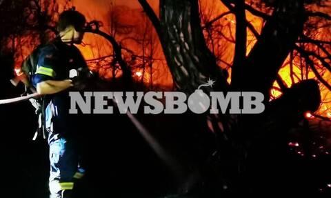 Φωτιά στη Νέα Μάκρη 21 Σεπτεμβρίου
