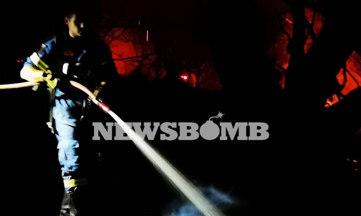 Φωτιά στη Νέα Μάκρη: Καλύτερη η εικόνα της πυρκαγιάς - Ενισχύθηκαν οι πυροσβεστικές δυνάμεις