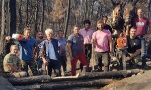 Εύβοια: Ορίστηκαν οι πρώτοι «ανάδοχοι αναδάσωσης» μετά τις φωτιές του Αυγούστου