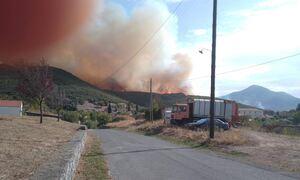 Φωτιά στη Μεγαλόπολη - Απειλείται ο οικισμός Καλύβια - Ενεργοποιήθηκε το 112