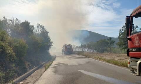 Φωτιά Μεγαλόπολη - Ρεπορτάζ Newsbomb.gr: «Μπήκαν σε οικισμό στο Λεοντάρι οι φλόγες», λέει ο δήμαρχος