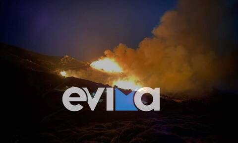 Φωτιά στην Κάρυστο – Ραβιόλος: Δίπλα στον οικισμό Πρινιά οι φλόγες
