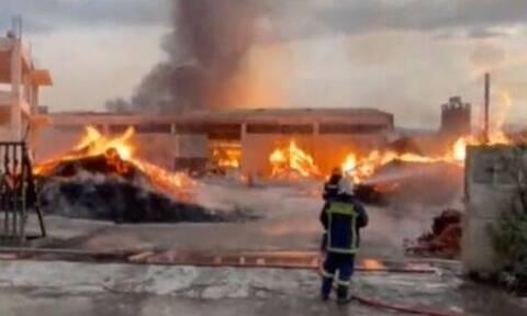 Φωτιά στον Ασπρόπυργο: Καλύτερη η εικόνα, περιορίζεται περιμετρικά η πυρκαγιά