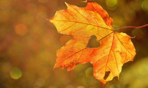 Φθινοπωρινή ισημερία: Και επίσημα... Φθινόπωρο από σήμερα