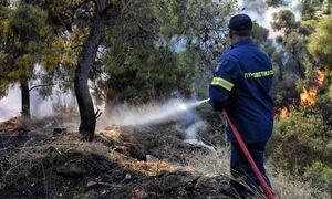 Φωτιά τώρα: Μεγάλη πυρκαγιά στα Χανιά στην περιοχή Πλακάλωνα