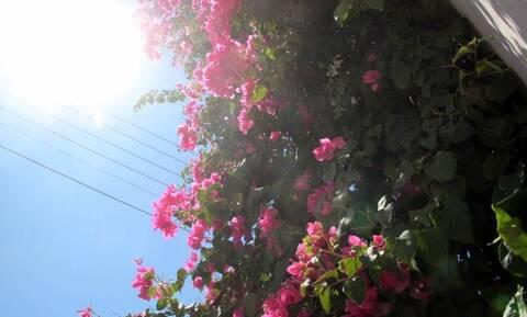Βελτιώνεται ο καιρός την Παρασκευή (24/9) – Ανεβαίνει η θερμοκρασία, εξασθενούν οι βοριάδες