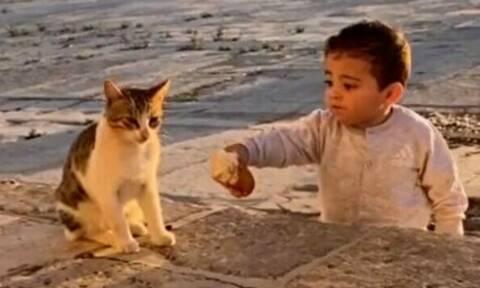 Αγοράκι μοιράζεται το φαγητό του με μια γάτα - Δείτε το βίντεο που έγινε viral