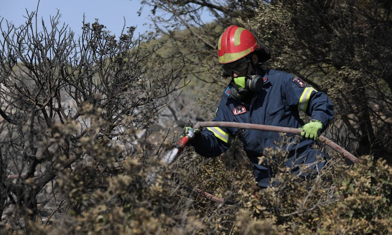 Φωτιά ΤΩΡΑ στην Ηλεία - Δεν απειλούνται σπίτια