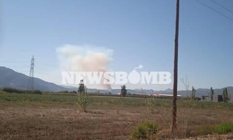 Φωτιά ΤΩΡΑ: Μεγάλη πυρκαγιά στην Αταλάντη
