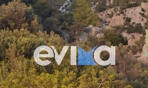 Εύβοια: Περιπέτεια για Γάλλο περιπατητή σε Φαράγγι στη Δάφνη – Συναγερμός στην Πυροσβεστική