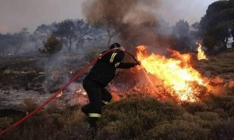 Φωτιά ΤΩΡΑ: Σε εξέλιξη οι πυρκαγιές σε Καστοριά και Κοζάνη