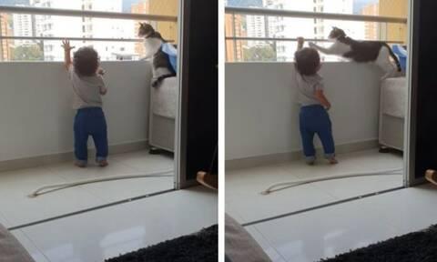 """Γάτα """"φύλακας άγγελος"""" - Δείτε πώς κρατά ένα παιδί μακριά από τα κάγκελα"""