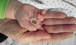ΟΠΕΚΑ - Επίδομα παιδιού Α21: Πληρώνεται η 4η δόση - Ποιοι θα δουν αυξήσεις