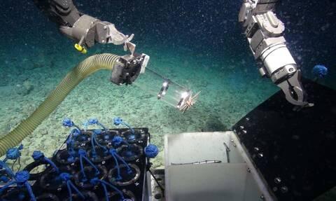 Η απάντηση για τις μελλοντικές πανδημίες βρίσκεται στα… βάθη των ωκεανών